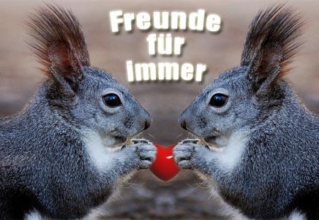 Freunde für immer mit Eichhörnchen