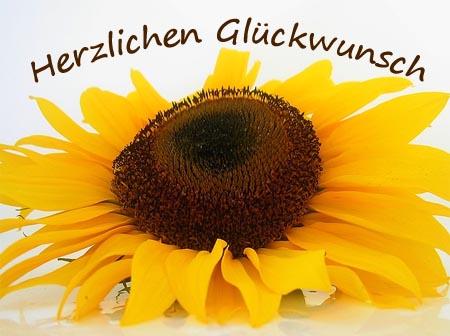 Gru� zum Geburtstag f�r die Mutter mit einer Sonnenblume