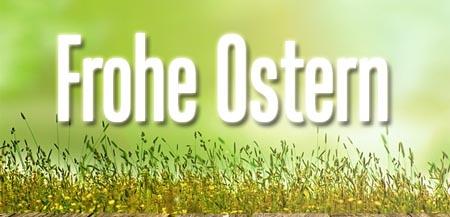 Osterwünsche im Gras