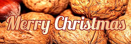 Merry Chrsitmas mit Nüssen zu Weihnachten